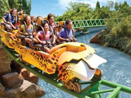Ticket SeaWorld® / Busch Gardens Parks